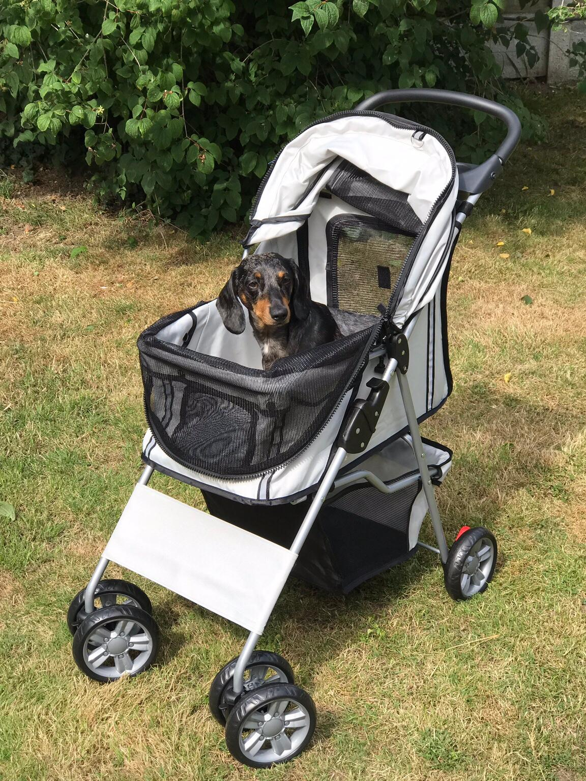 Pet pushchair stroller buggy, for small dog in CT9 Thanet ...