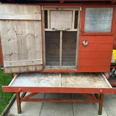 Pigeon kit box in BD8 Bradford for £150 00 for sale - Shpock