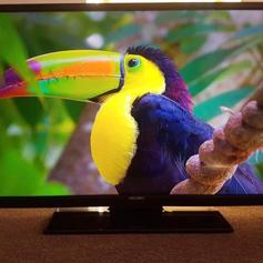 Bush 49inch FHD Smart TV with Freeview Play in DA16 London