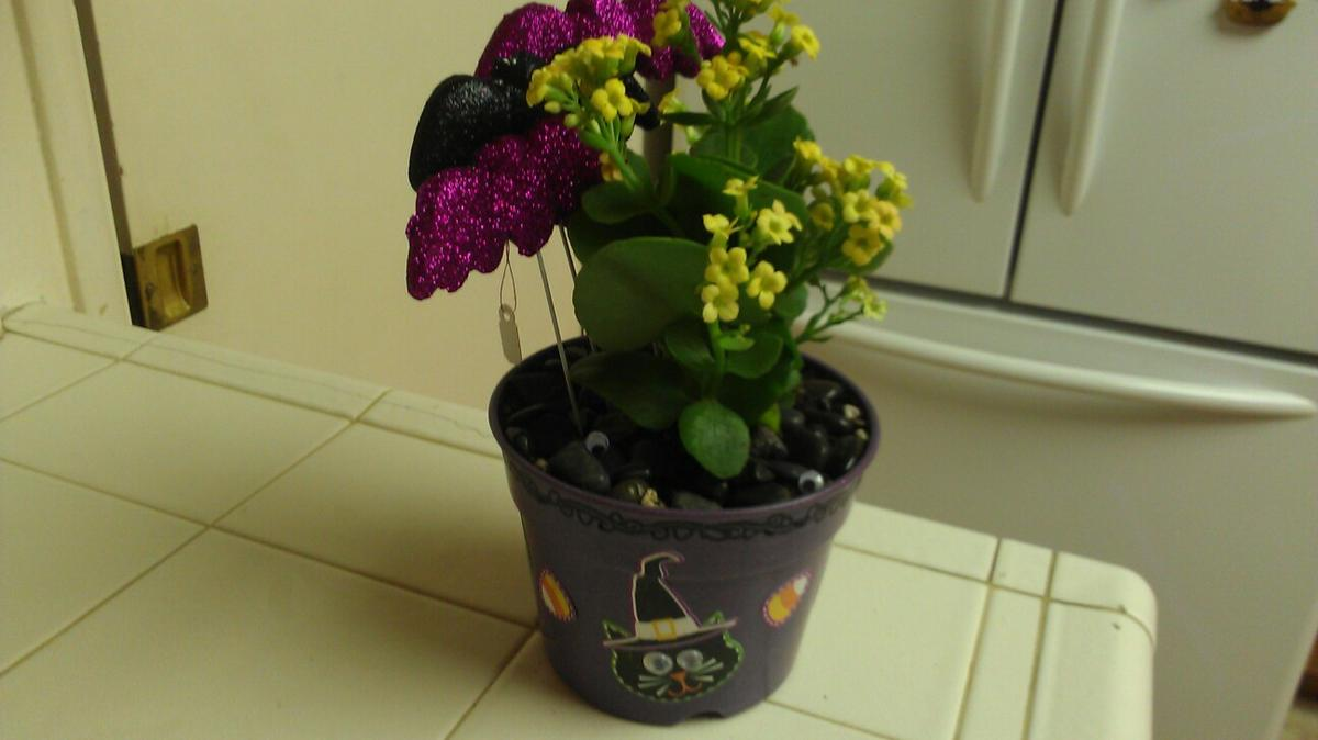 Purple Halloween Plant In 92806 Anaheim For Us 15 00 For Sale Shpock