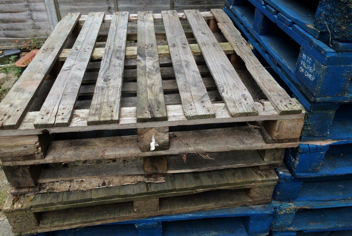 Wooden Pallets in SW17 London for free for sale | Shpock