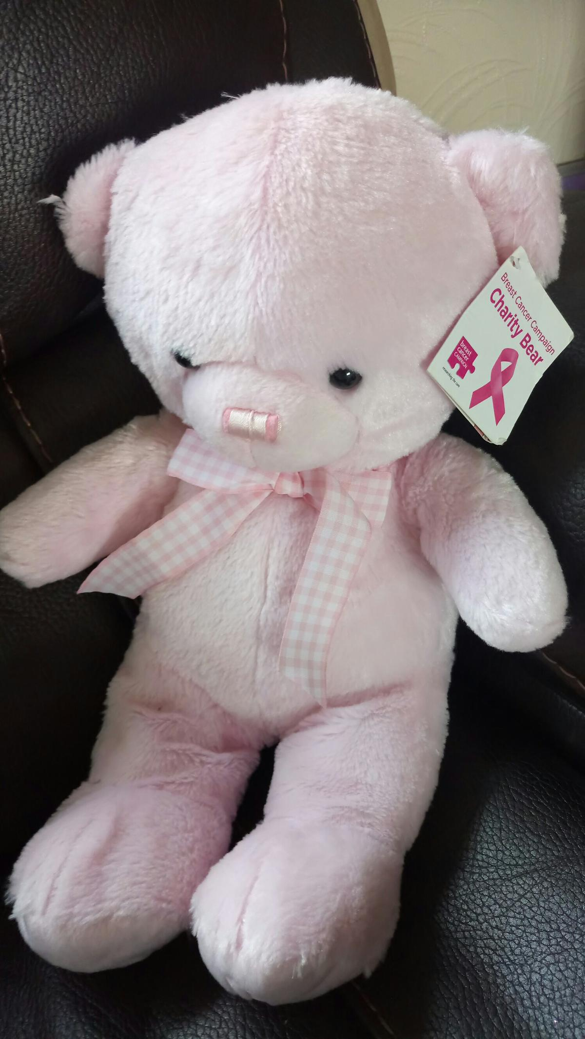Breast cancer campaign charity bear pink