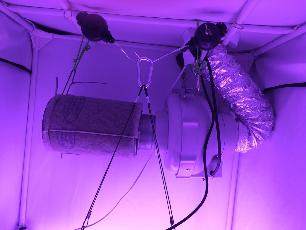 400w Vipar Spectra LED Complete Grow Kit  in NG13 Rushcliffe