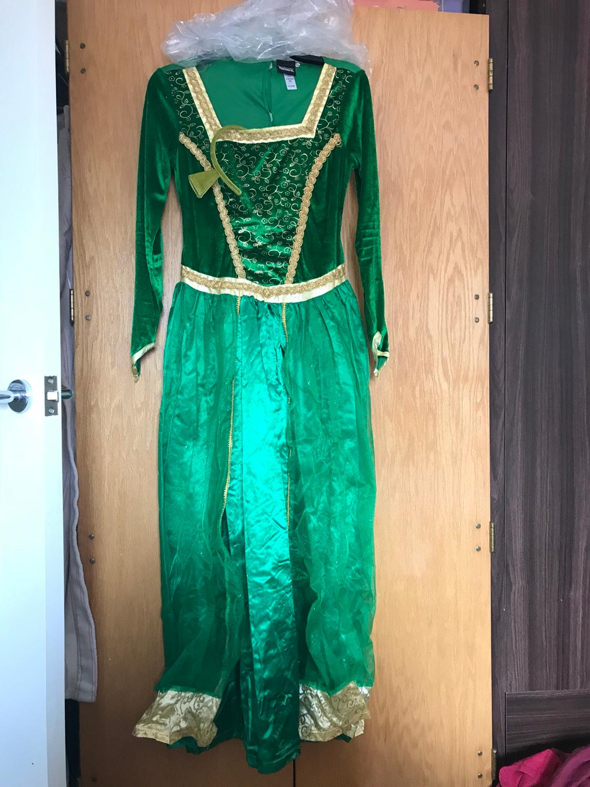 Shrek and Princess Fiona fancy dress costumes in TF1 ...