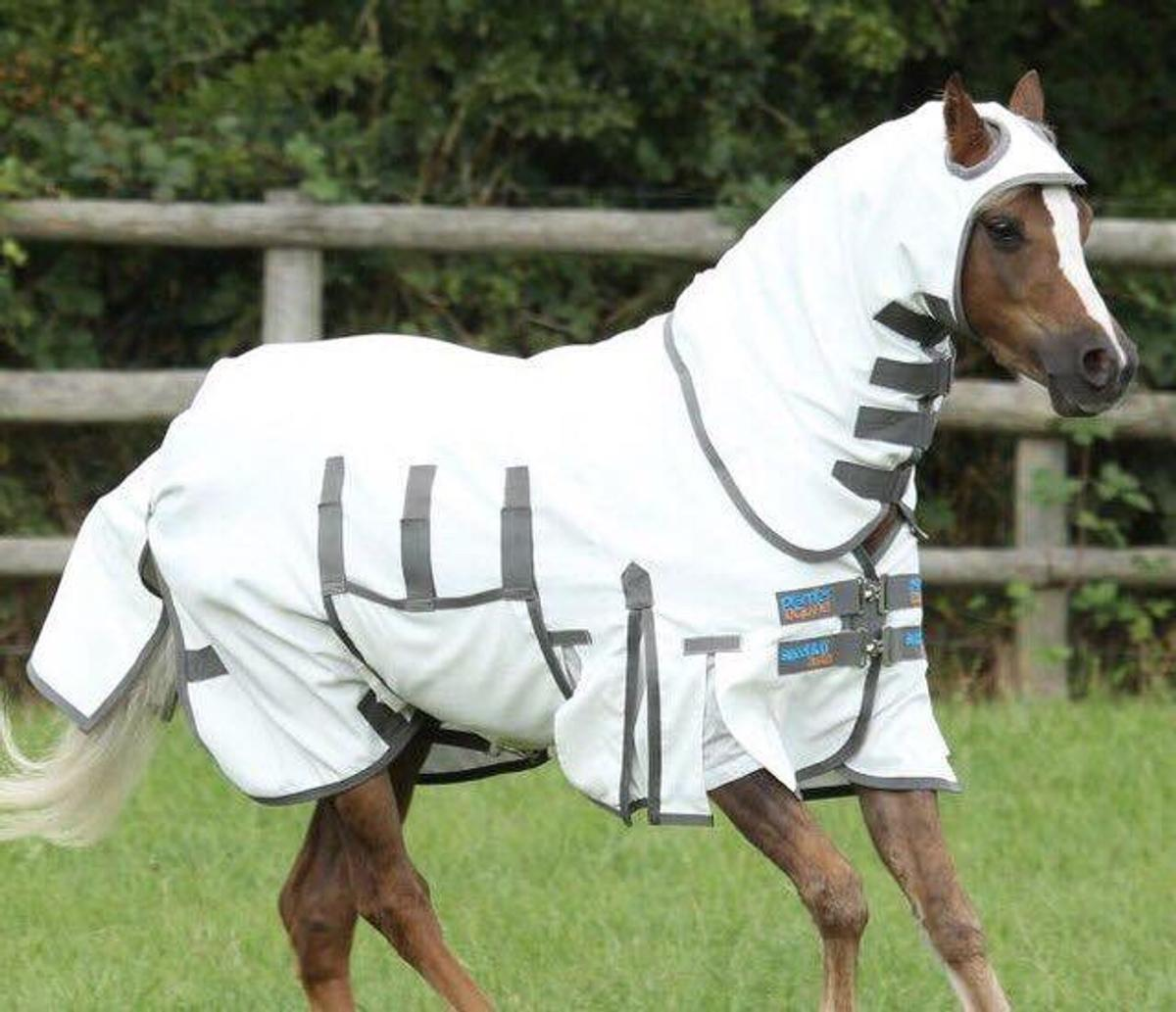 Equine Sweet Itch Buster Fly Rug