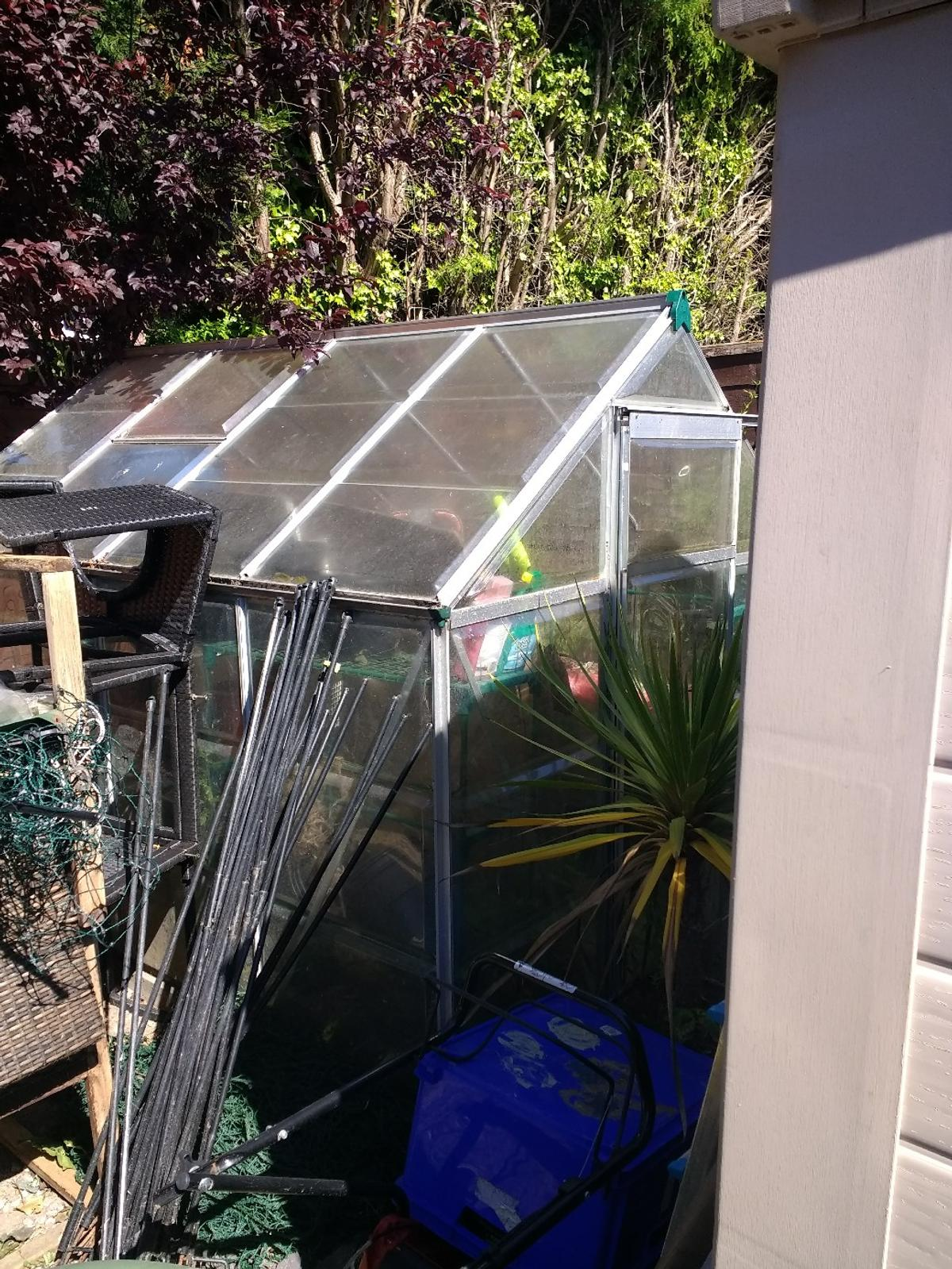 Palram 8x6 polycarbonate greenhouse in South Ribble for
