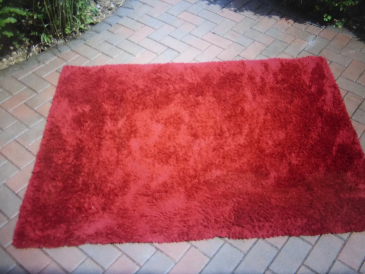 Large Red Rug In So40 Forest For 20 00