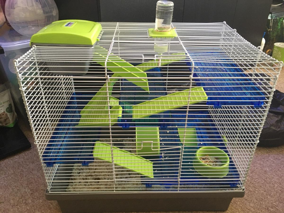 Hamster Cage Translucent Tea Pet Play Rosewood PICO Hamster Home Extra Large