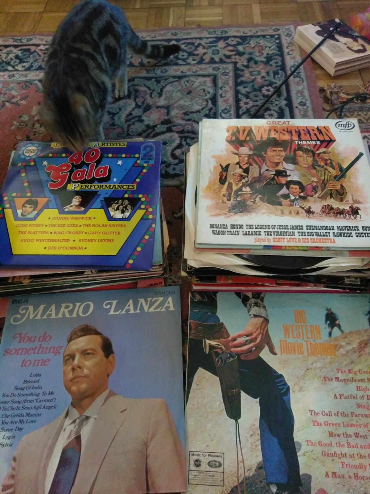 Selection of Records  Bulk buy  in TN38 Rother for £25 00