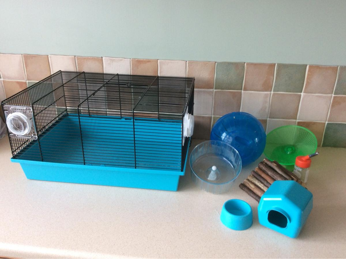 Medium Wire Hamster Cage From Pets At Home In Lichfield For 7 00 For Sale Shpock