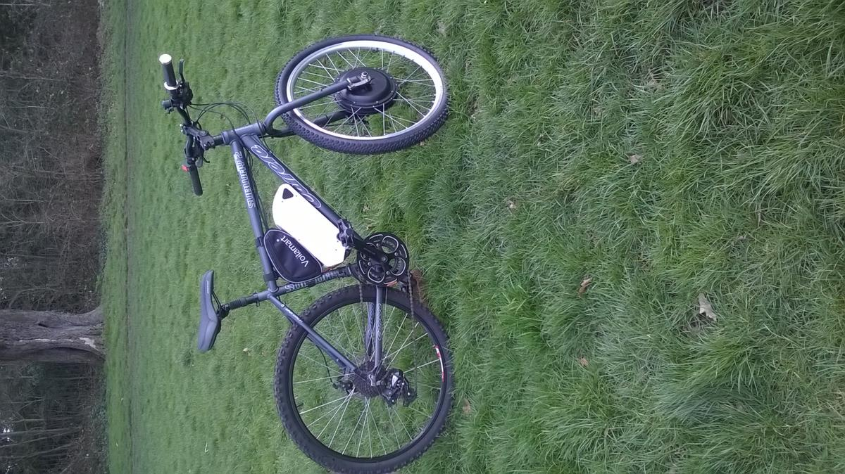 Electric Bike 1000w 48v 12 5ah in SE22 London for £1,000 00 for sale