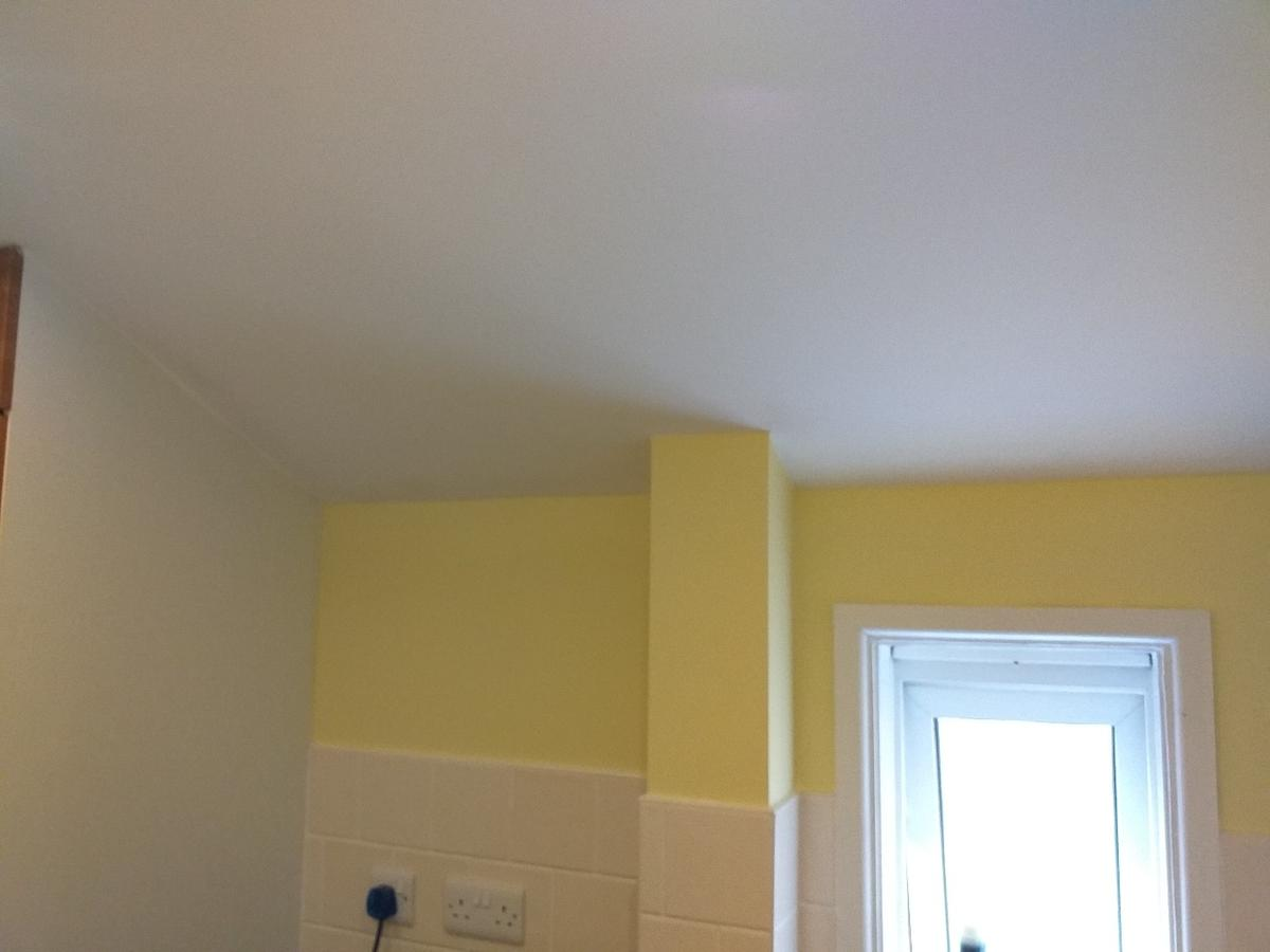 Reliable Painter And Decorator Derby Based In De23 Derby Fur 123 00