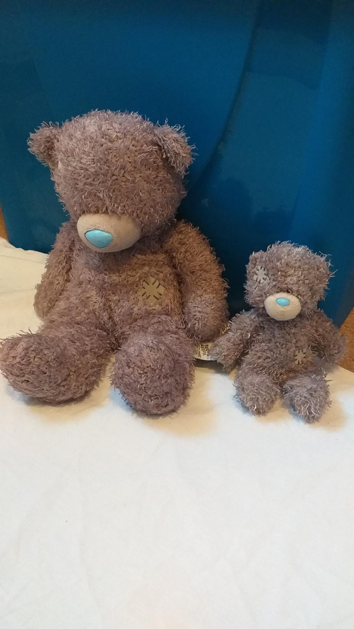 Blue nose teddy bear pictures