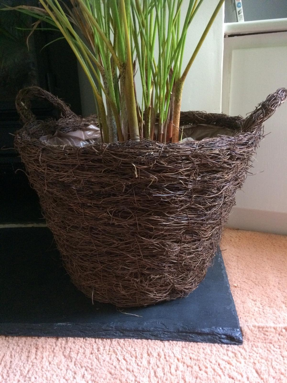 Rattan Indoor Planter In Me2 Strood Für