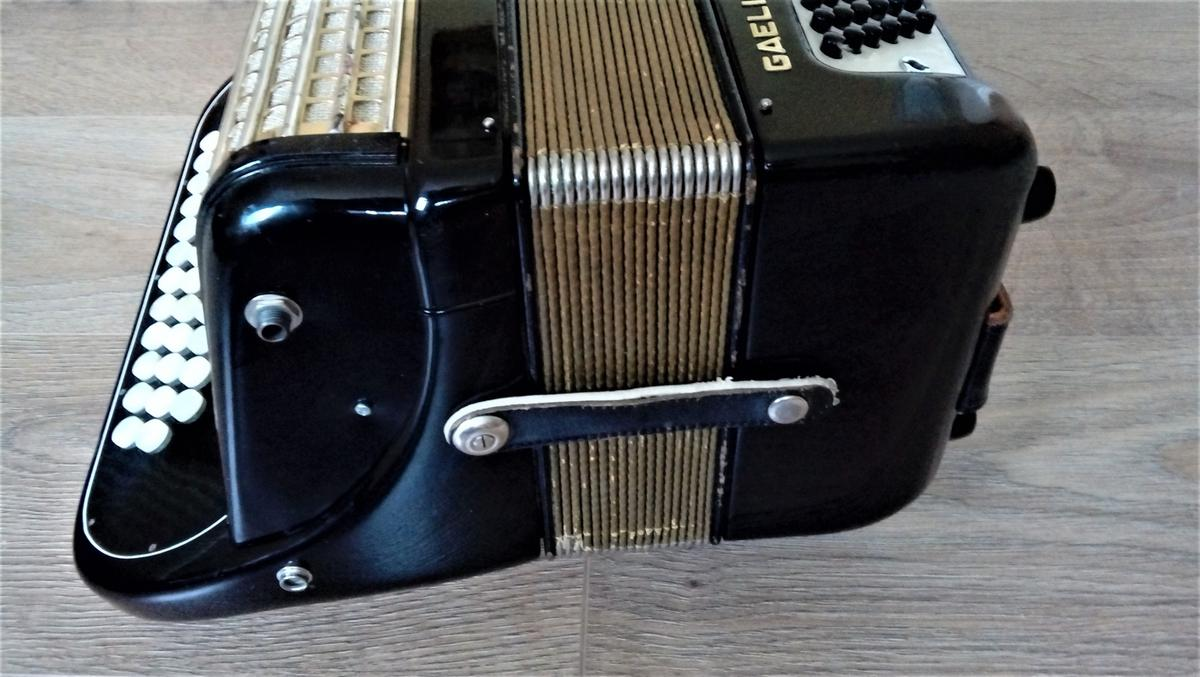 Hohner Gaelic IVS in Luton for £450 00 for sale - Shpock