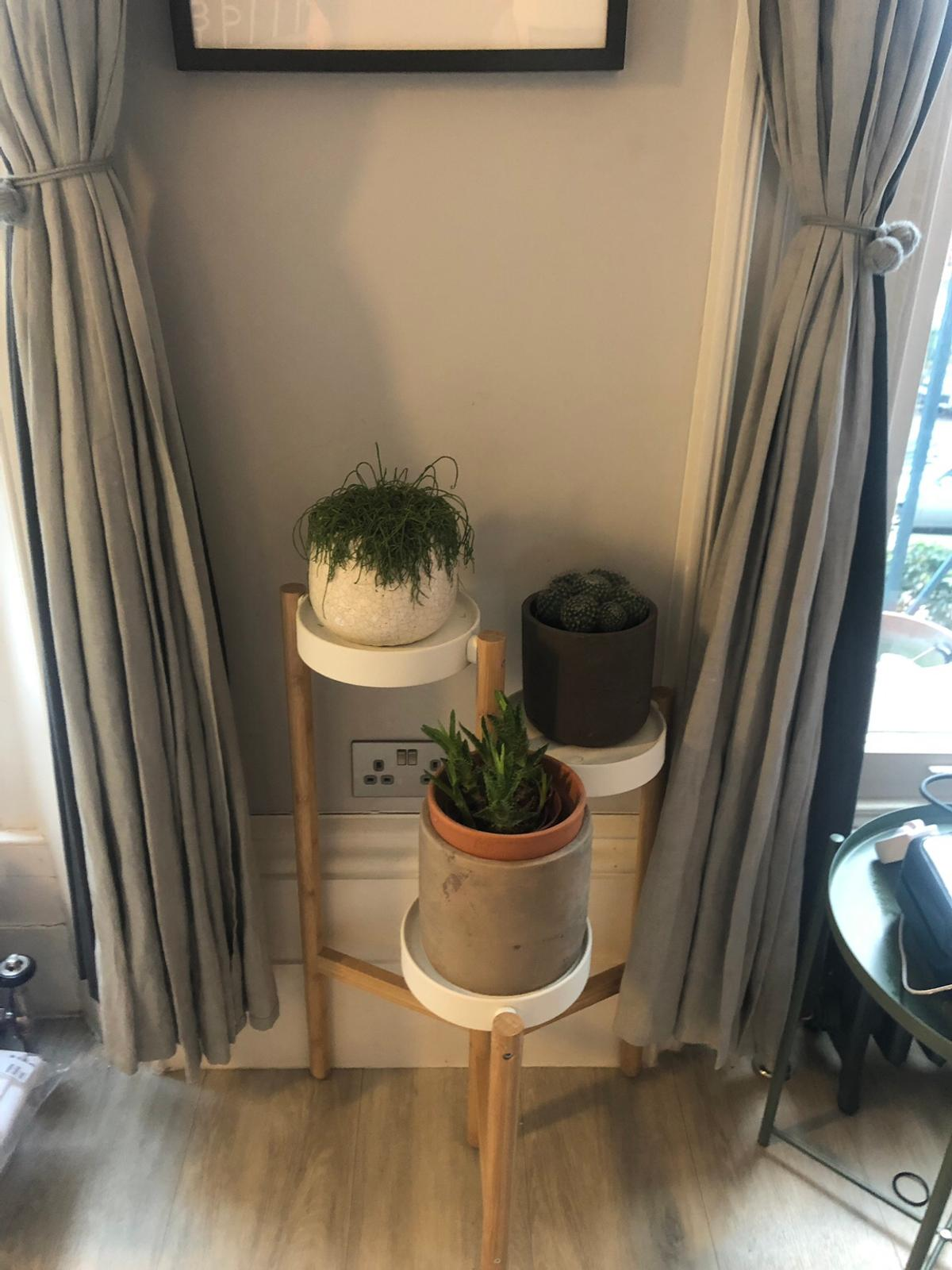 Ikea Satsumas Plant Stand In Se5 London For 12 00 For Sale Shpock