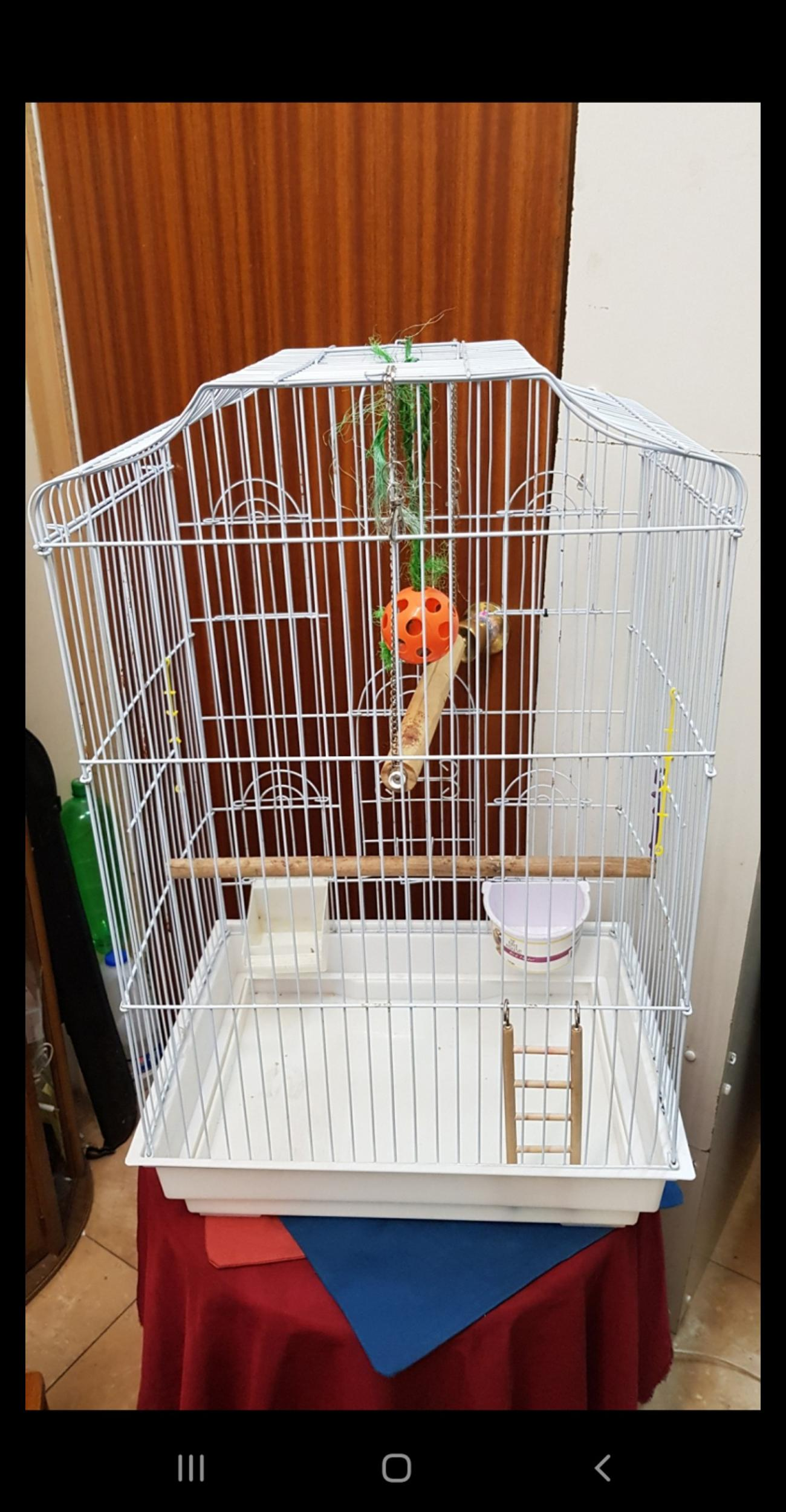 Bird Cage with accessories H71cm L43cm W33 in excellent CLEAN condition contact on 07787121679,please collection from Blackburn bb1 5pq