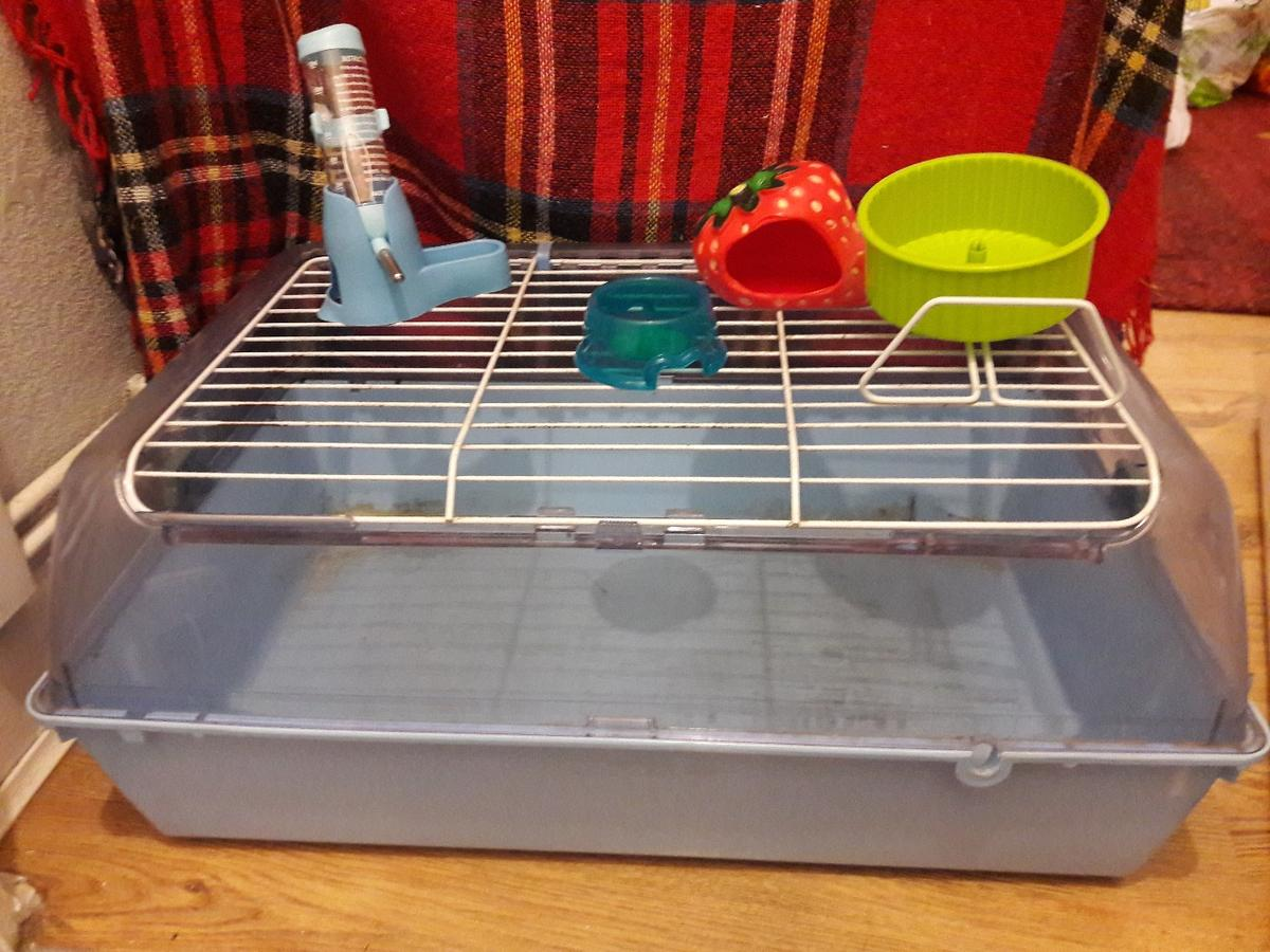 Blue zoozone1 cage. These are advertised for guinea pigs but are nowhere near suitable but make fab hamster cages. Comes with strawberry hide, food bowl, and an extra small wheel (suitable for robo hamsters). Condition as seen - few urine marks but they may come out with a soak in white vinegar (bottle now not included)