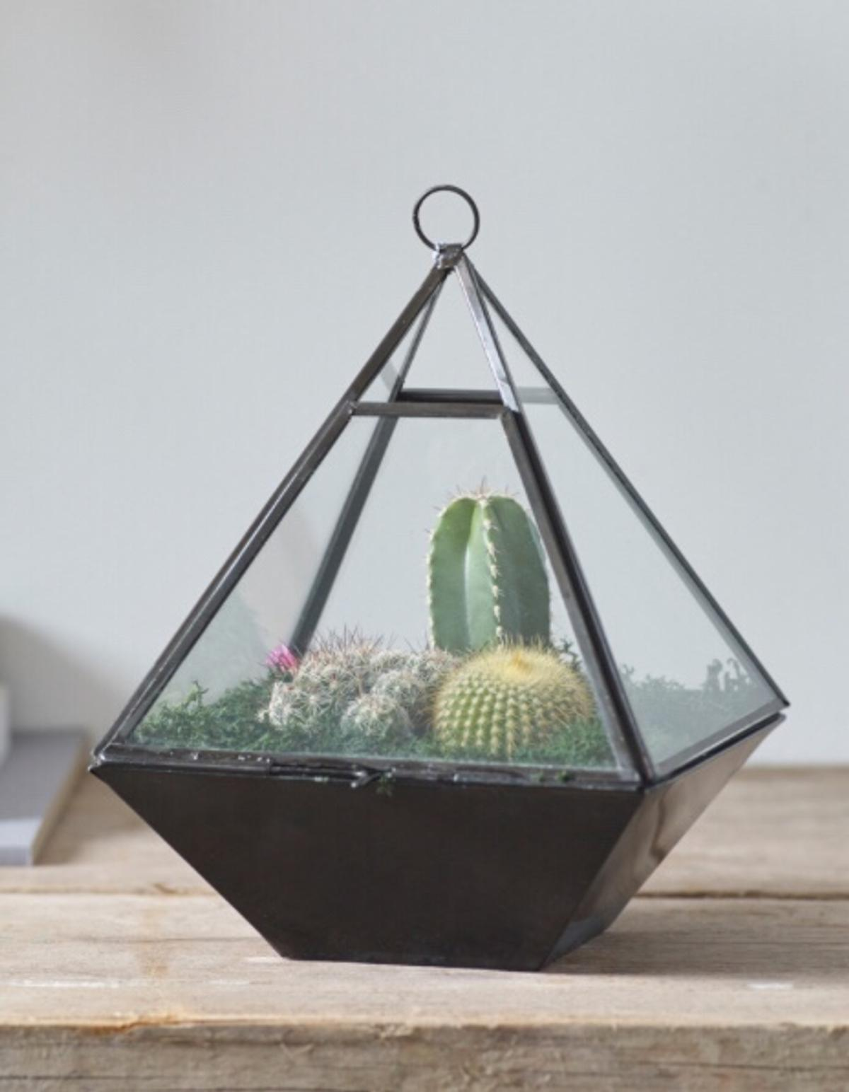 Glass Pyramid Terrarium Home Decoration In B25 Birmingham For 5 00 For Sale Shpock