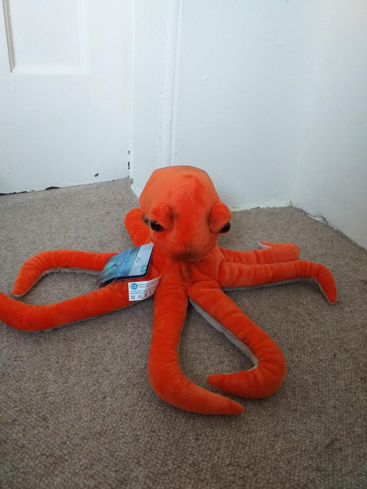 Planet Earth Octopus