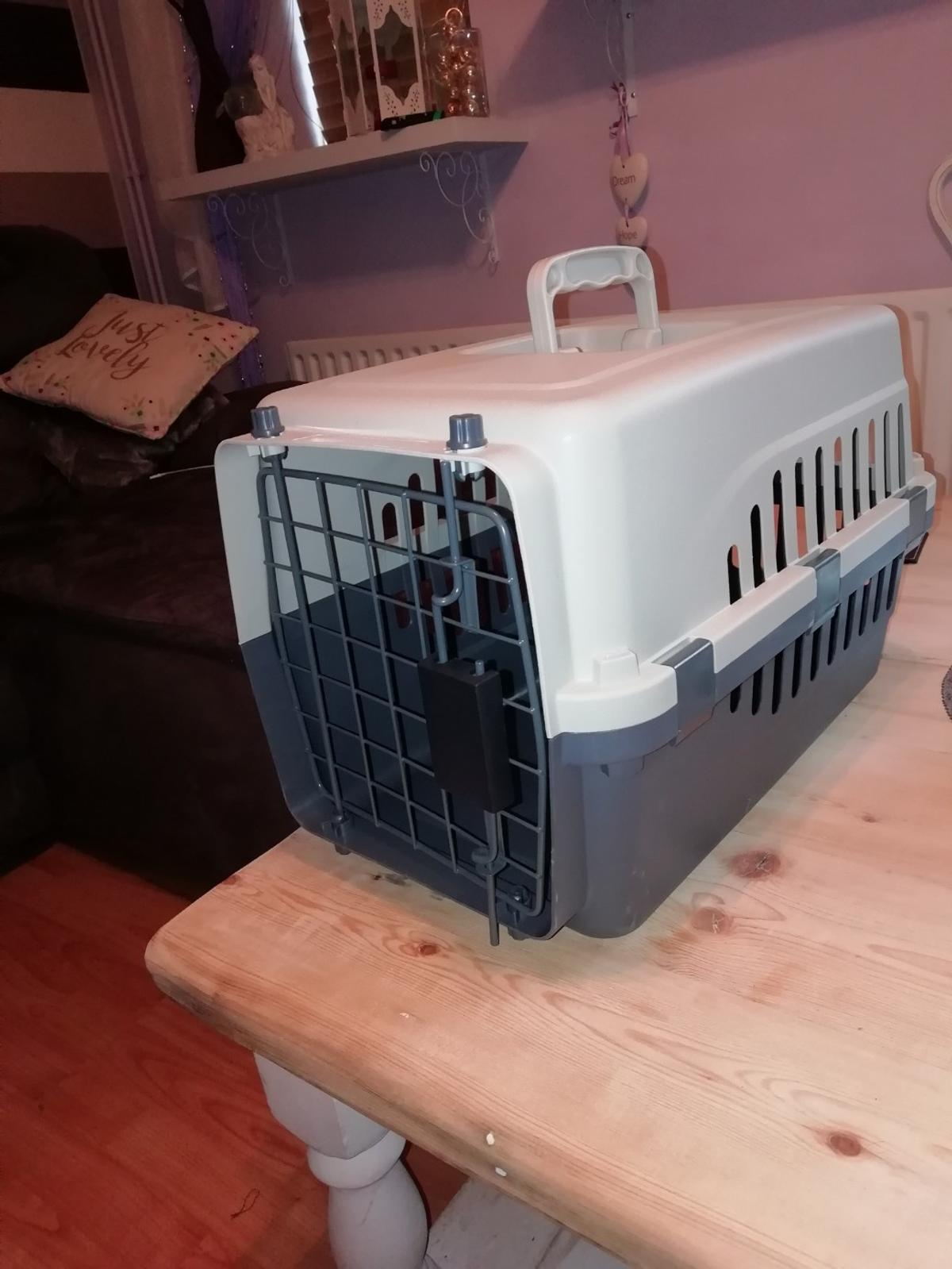 New cat carrier. Unwanted gift