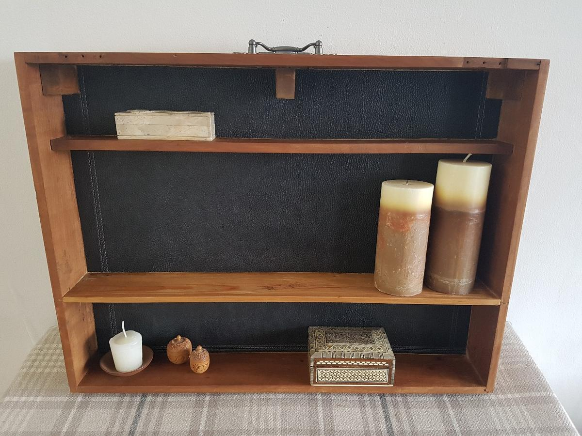 Quirky wooden shelving draw with leather effect insects and oringal feature handle W61 x D9 x H46cm