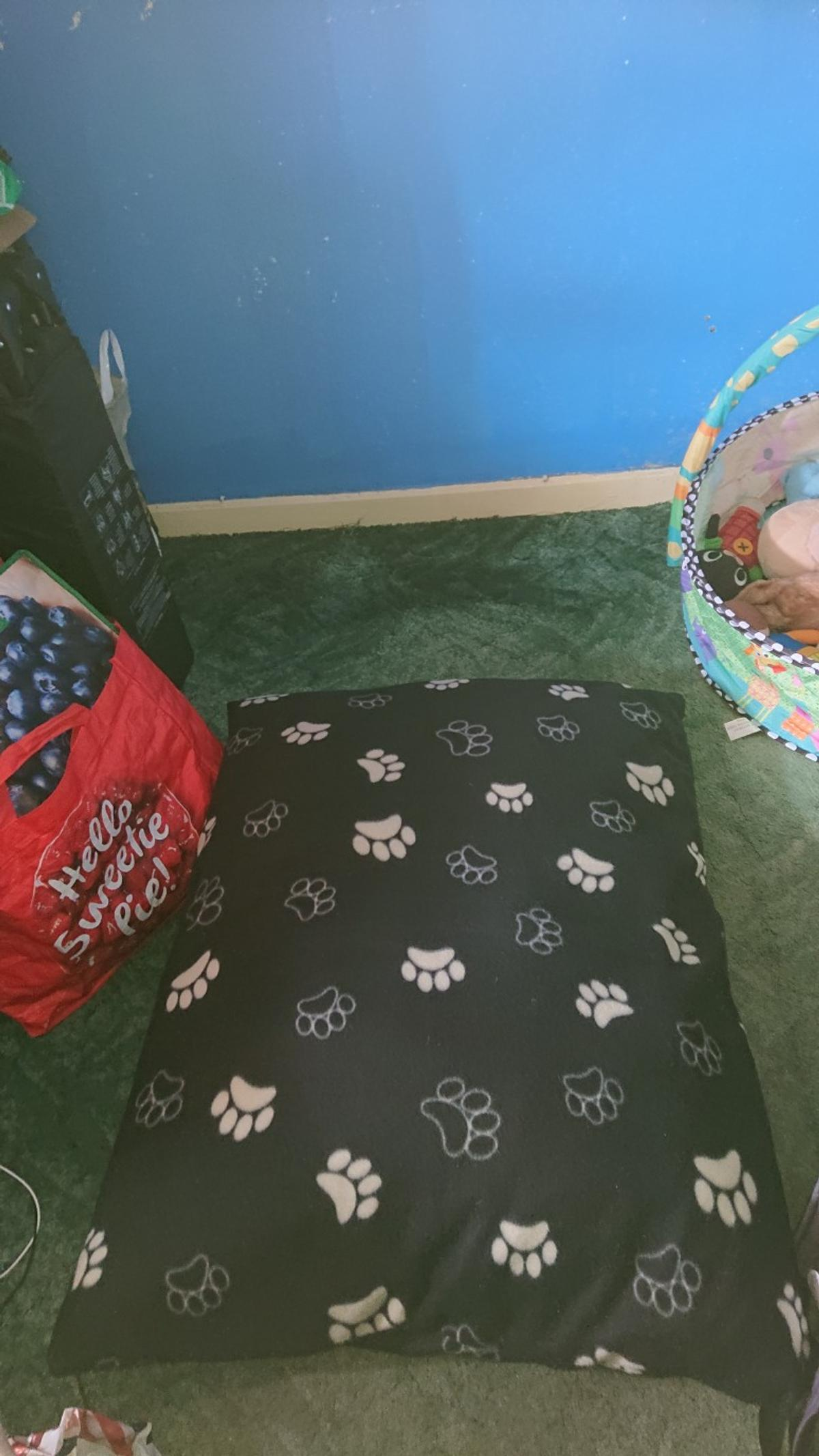 Brand New Medium sized dog bed.  Never been used, or touched.  Selling due to not having a dog in the end unfortunately.  Can be sold on its own or with a small bundle of dog things (see other things I'm selling to see them)