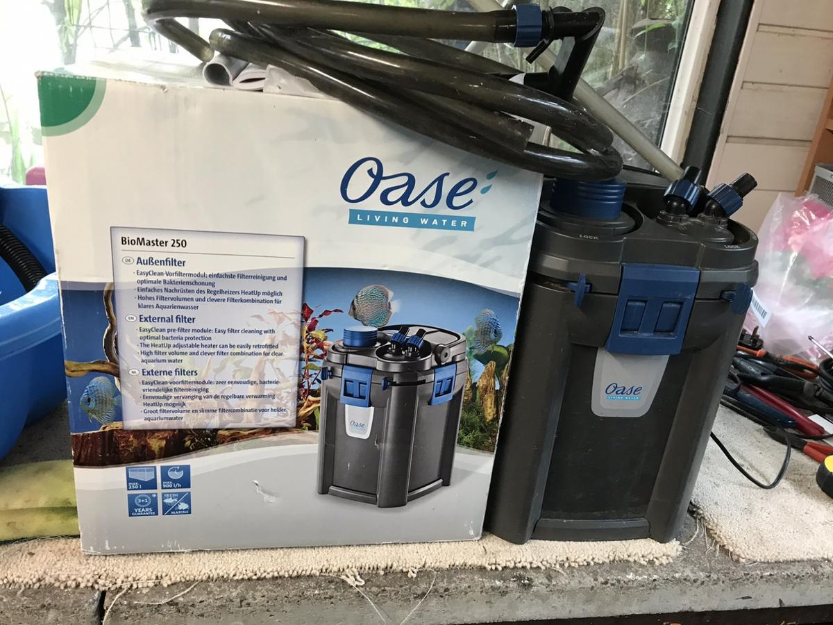 Oase biomaster 250 Aquarium filter Also I have koi for sale And koi fry