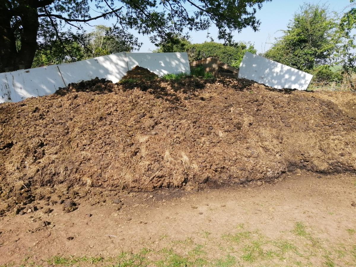 8 big bags of pure horse manure already in bags collection only from Kidderminster price is for the lot no delivery I have loads more bags if more is required collection only from Kidderminster