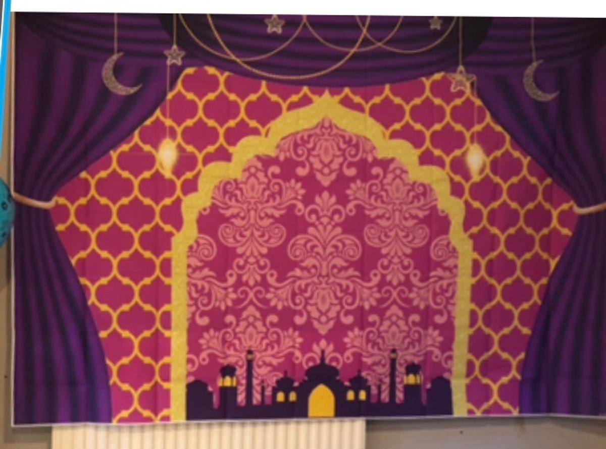 Aladdin and jasmine or shimmer and shine back drop for kids party. Only been used once. Collection only