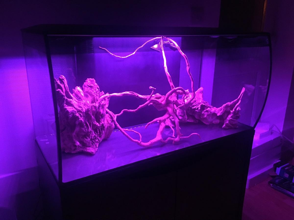bought Christmas 2019, running since February this year.  3 types of aquatic plants growing well and moss on two pieces of driftwood. No fish have been put in yet (due to COVID-19).  Selling due to a change in living circumstances. Everything in excellent condition.  PICK UP ONLY, DIDCOT. I can empty the tank for transport, the plants will survive for many hours while still wet.  Tank dimensions: 82 x 40 x 39cm (L x W xH) Cabinet dimensions: 82.8 x 42 x 75.5cm (L x W xH)