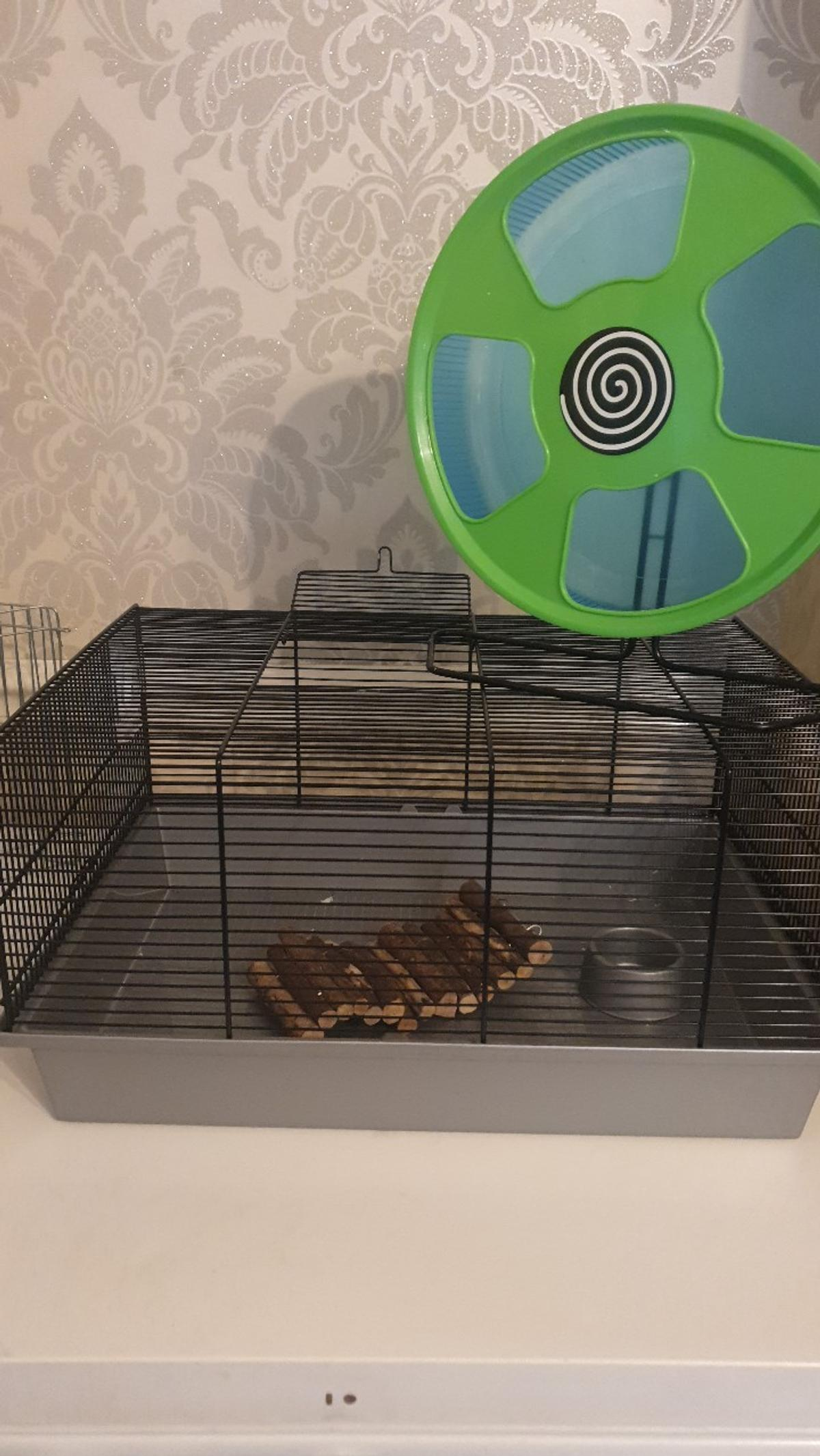 Medium Wire Hamster Home In London Borough Of Barking And Dagenham For 10 00 For Sale Shpock